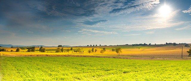 Dzierzawa gruntu pod farme fotowoltaiczna